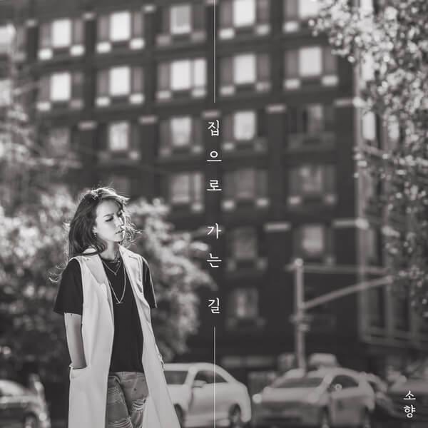 Sohyang (소향) – Going Home (집으로 가는 길) Lyrics