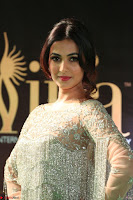 Sonal Chauhan in a stonework Floor Length Silver Designer Gown at IIFA Utsavam Awards March 2017 017.JPG