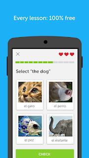 Duolingo v3.20.3 Terbaru Android