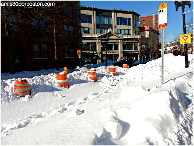 Massachusetts Ave. en Cambridge Después de Juno
