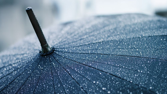 Terungkap! 7 Fakta Yang Terjadi Ketika Turun Hujan Pertama Pada Setiap Musimnya