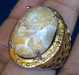 Cincin Batu Akik Fosil - ZP 494