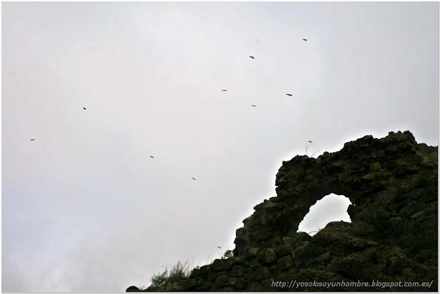 Buitres sobrevolando las ruinas
