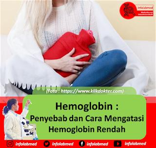 Hemoglobin Rendah,  Penyebab dan Cara Mengatasi Hemoglobin Rendah
