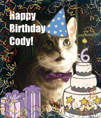Cat Chat With Caren And Cody Happy Birthday Youre 6