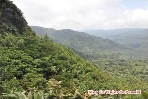 En Monteverde, Costa Rica, se encuentra un de los mas importantes ecosistemas de Bosque Nuboso del mundo.