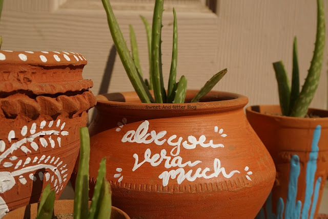 Aloe Vera Pun on Clay Pot Aloe You Vera Much