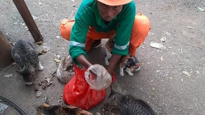 Penyapu Jalan di Kota Tangerang ini selalu Beri Makan 40 Ekor Kucing Liar Setiap Hari Usai Kerja