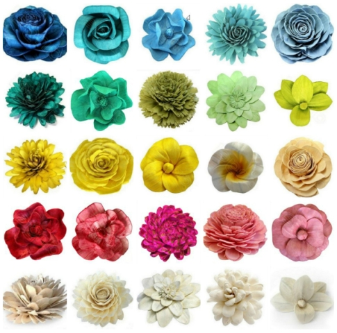 Different Types Of Flowers Chart