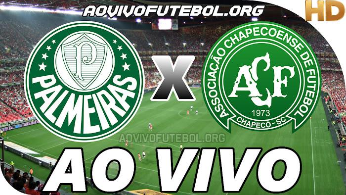 Assistir Palmeiras x Chapecoense Ao Vivo HD