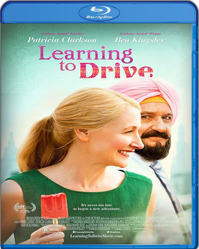Learning to Drive [BD25] [2014] [Español]