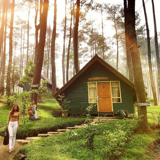 foto rumah hobbit di grafika cikole