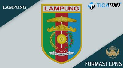 Formasi CPNS Pemprov Lampung 2018, Berikut Ini Rincian Lengkapnya (Pemprov, Pemkot, Pemkab)
