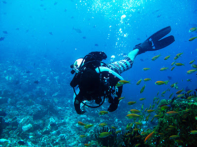 diving pulau rubiah