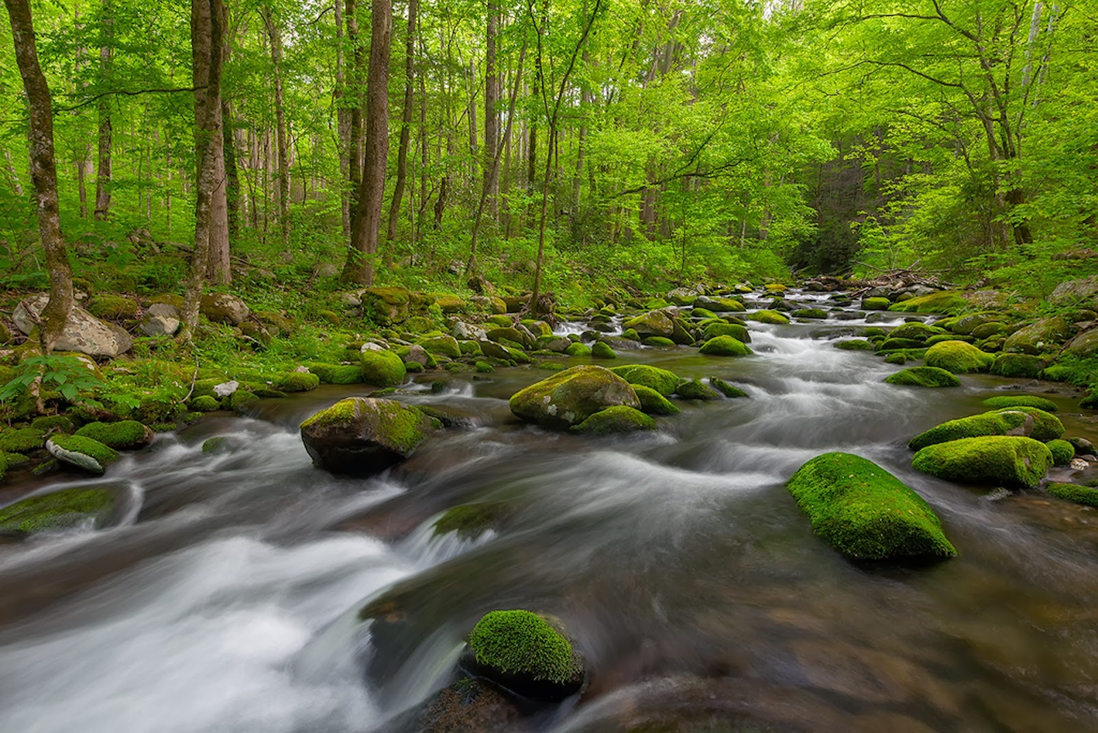 Full hd green nature waterfall images wallpapers for - Green nature wallpaper full hd ...