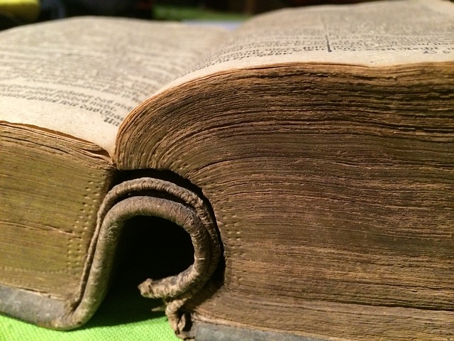 Quem veio primeiro. A igreja ou a Bíblia?