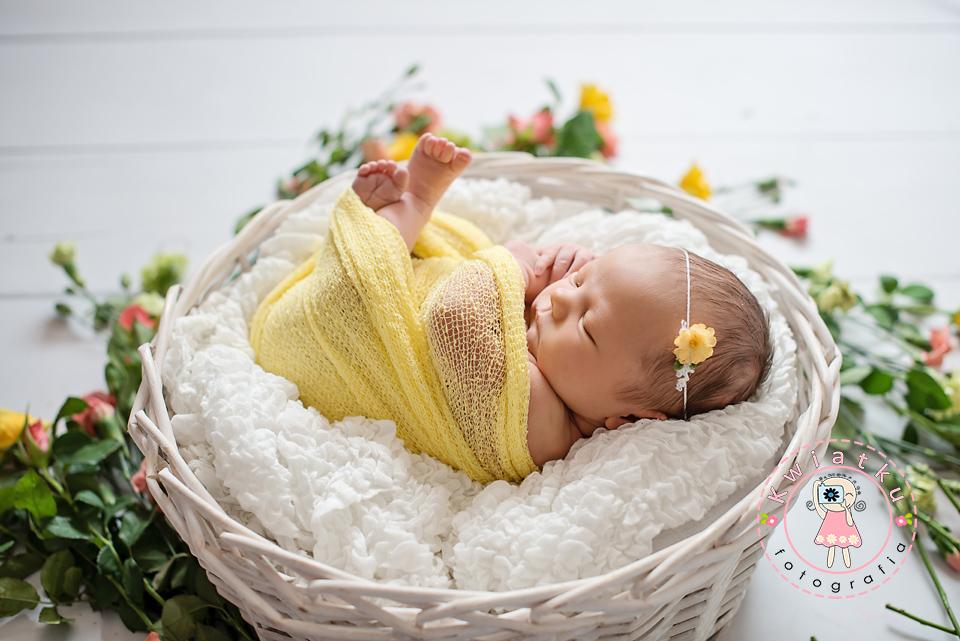 Sesja noworodkowa Gdańsk, fotografia noworodkowa trojmiasto, zdjęcia niemowląt, sesja ciążowa
