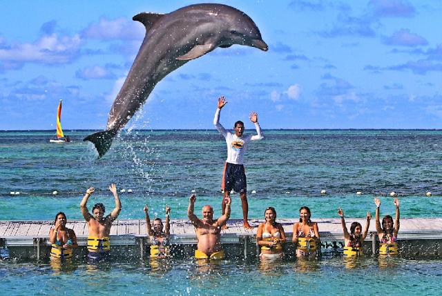 Conheça o parque Dolphin Island Park em Puna Cana