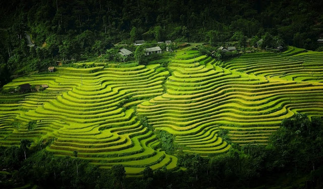 Stunning Ha Giang: In pictures 3