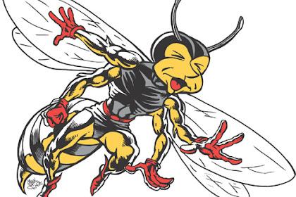 Bee Clipart4