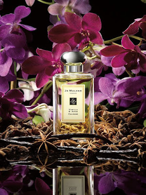 parfum vanila dari bahan alami