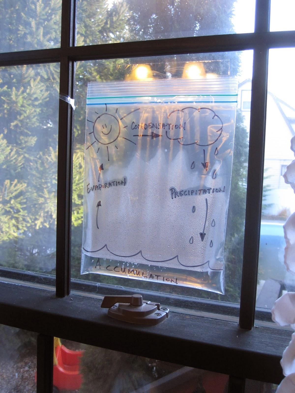 Weeks 10 Amp 11 Environmental Engineering Water Cycle Amp Water We Use