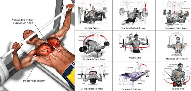 A Sample Chest Workout Routine