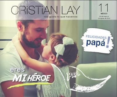 cristian lay mexico campaña 11 2016