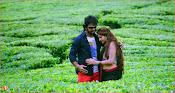 Dandu Movie Stills-thumbnail-10