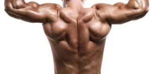 6 Methods to Stretch Muscle Effectively