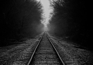 Train Line in a Forest, Black and White Photo