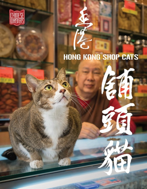 hong kong shop cats book