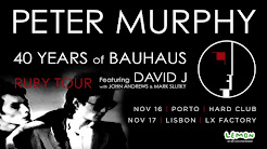 Peter Murphy @ Hard Club