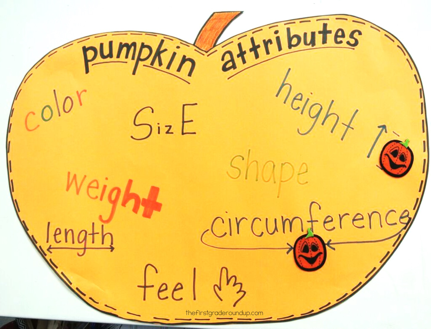Pumpkin Measuring Planning For Mistakes