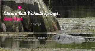 Alfred B. Maclay Gardens State Park - TOP 10 Sehenswürdigkeiten Florida