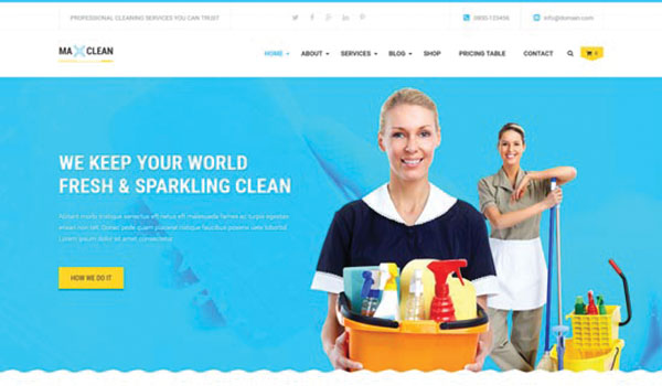 max-cleaners-wp-theme