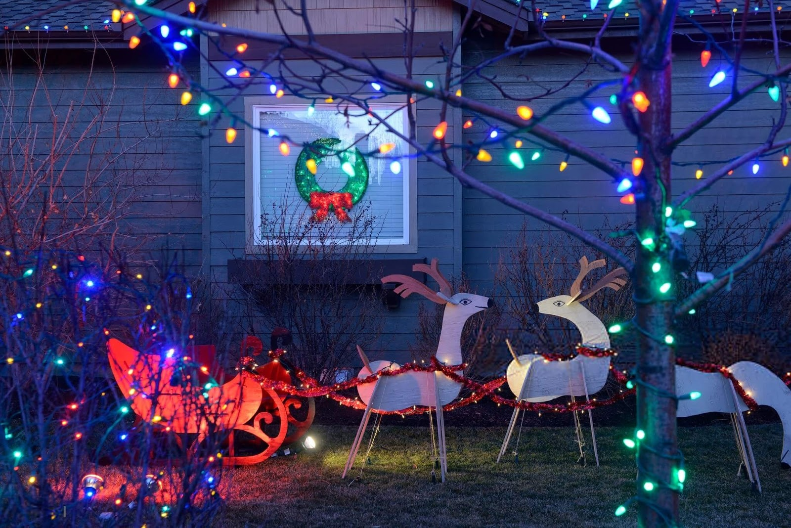Christmas Lights Pictures