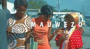 Download Video   Amenya ft Mr Nana - Mauwezo