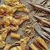 """2800-годишно """"царско златно съкровище"""" откриха археолози в Източен Казахстан (видео)"""