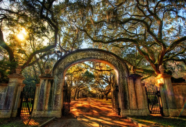 Georgia Wormsloe Historic Site, Savannah