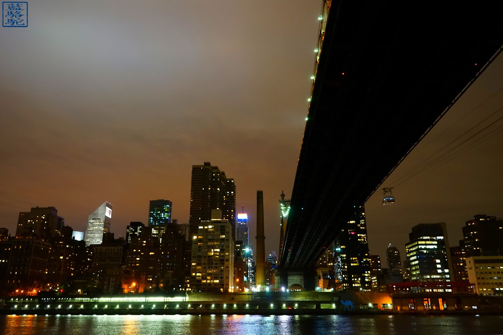 Le Chameau Bleu - Vue de Manhattan depuis Roosevelt Island