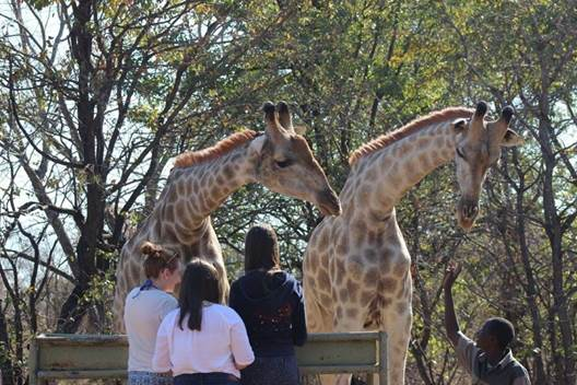 Meet your friendly neighbours at AVANI Hotels in Zambia, Thailand