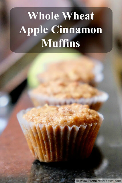 Buttery chunks of sweet fresh apple in a wholesome whole grain muffin.