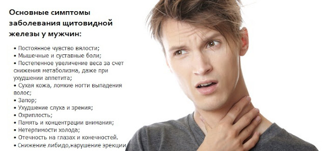 Щитовидная железа: советы врача-эндокринолога