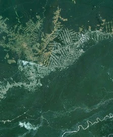 Expanded view of Pando Department of Bolivia from GoogleEarth.
