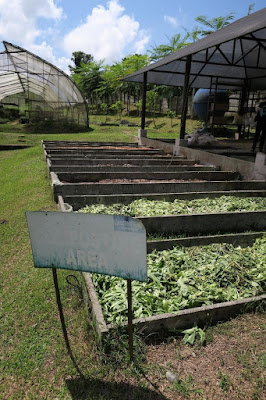 visit farms philippines