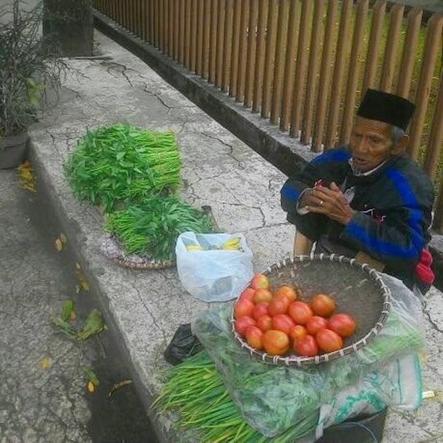 Belasan Kilometer Jalan, Kakek Penjual Sayur ini Rela Dibayar Seikhlasnya