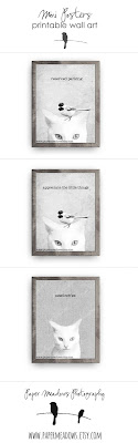 Cat and Bird Mini Posters. You can purchase and download our photography creations and instantly print at home from our Paper Meadows Photography Shop on ETSY. To Visit our shop now click here.