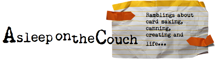 Asleep on the Couch Design