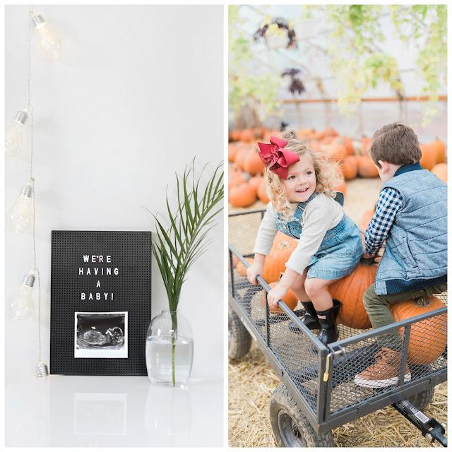 October Blogger Picks 20